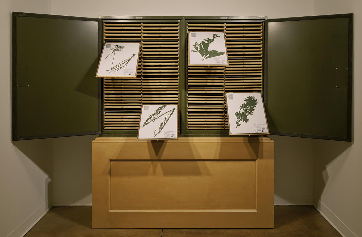 "Figure 9.   Jenny Yurshansky, Blacklisted: A Planted Allegory (Herbarium) (2015). 25x20x122."" Steel herbarium cabinets, MDF, wood, brass, assorted paper, 133 hand-cut silhouettes. Photo: Jenny Yurshansky."