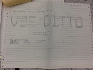 VSE DITTO report cover sheet.